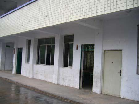 地震后完好无损的教室