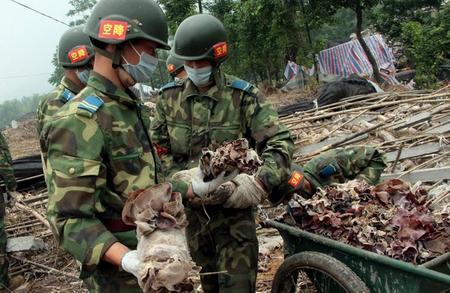 5月24日,该连官兵在的废墟里采摘木耳