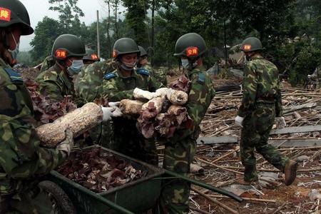 5月24日,该连官兵在的废墟里采摘木耳。