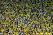 图文:希腊VS瑞典  狂热黄衣球迷