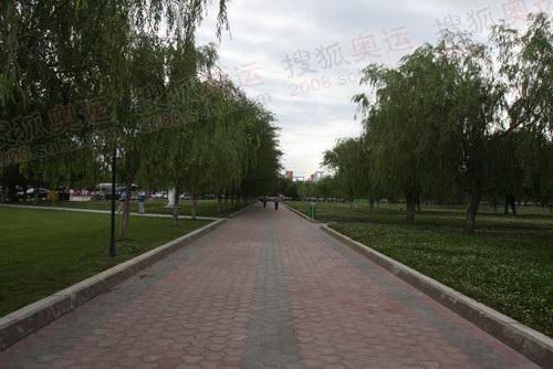世纪公园的广场