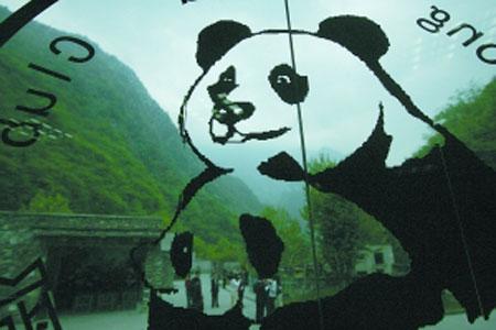 大熊猫苑位于两座大山之间,地震后这里的山体发生大面积垮塌。