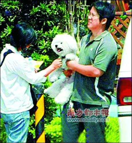 图二:爱犬跟班