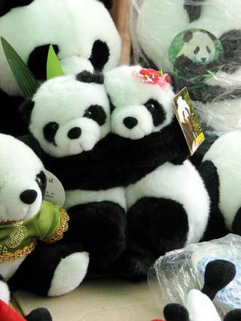 灾后熊猫的新家雅安碧峰峡参观攻略禧攻略延吧图片