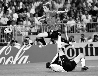 托雷斯一脚圆了西班牙球迷的梦想
