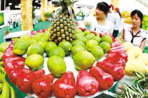 台湾的水果品质过硬,深受两岸同胞的喜爱。直航包机有利于这些科技含量很高的农产品在大陆生根发芽。