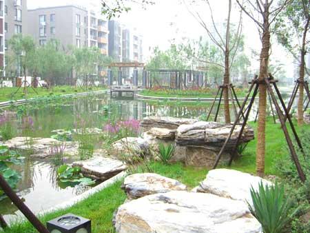 村内绿化景观