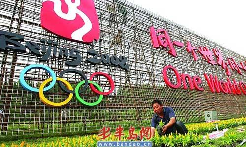 迎奥运巨型花墙