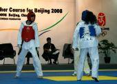 图文:中国跆拳道队进行教学表演 罗微在比赛中