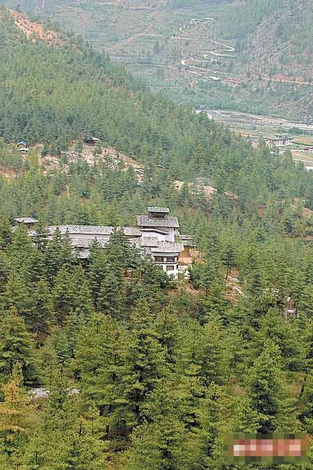 位于不丹帕罗市的Uma酒店,被树海包围,位居山上