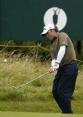 图文:英国公开赛第二日比赛 麦克多维尔挑球中