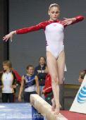 美国体操选手沃利受伤 恐将难以出征奥运会(图)
