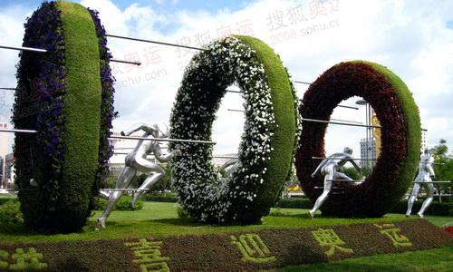 沈阳街头奥运植物景观