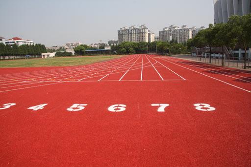 图文:探访莘庄基地 刘翔就在这里练110米栏
