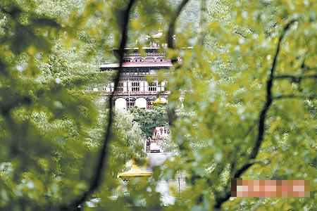 皇宫戒备森严,只能隐约从树林瞥见皇宫外观