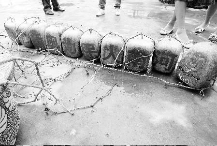十个方西瓜列队为奥运加油。它们背面长的字和正面贴的一样