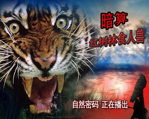 自然密码-- 暗算之红树林食人兽