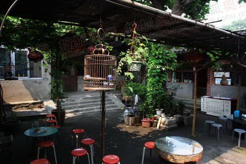 庭院有葡萄架,凉棚,座椅都是供游客休息之用