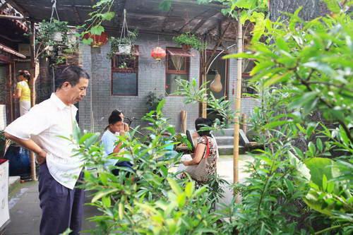 庭院主人观赏着自己的珍爱植物
