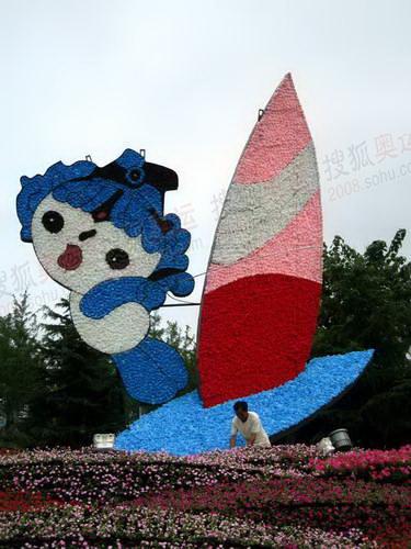 青岛景观花坛