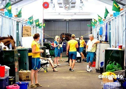 八月二日,奥运马术公司邀请香港本地媒体到香港沙田奥运马术比赛场地的马厩参观。图为澳大利亚的工作人员正打理马匹,马厩均插满了以袋鼠为标志的小旗。 中新社发 邓庆乐 摄