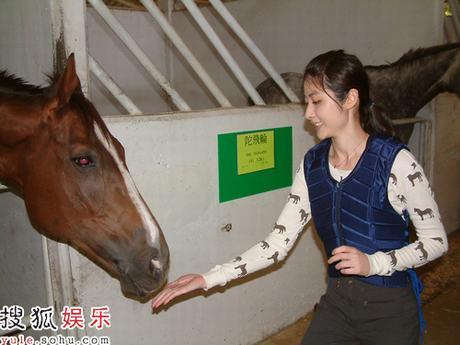 陈慧琳喂赛马