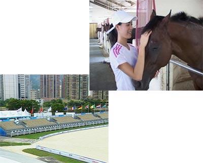 2005年7月国际奥委会决定2008年奥运会马术比赛在香港举行,这让麦嘉欣非常高兴,麦嘉欣对马有深厚的感情,绝大多数香港人是因为赛马而喜欢马,但麦嘉欣希望香港市民能够通过马术了解马还有很多很多的优点