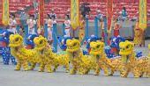 图文:第29届奥运会即将开幕 舞狮舞龙十分漂亮