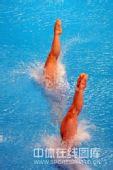 图文:女子双人三米板郭/吴卫冕 如水瞬间