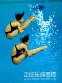 图文:女子双人三米板郭/吴卫冕 空中姿态优美