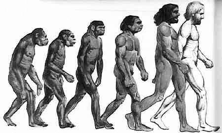 份研究报告中对人类的未来做了大胆预言:10万年后,人类可能将分