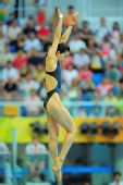 图文:女子3米跳板预赛 郭晶晶姿态纤长优美