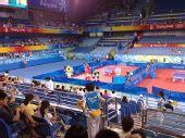 图文:女团半决赛中国VS中国香港 图为比赛现场