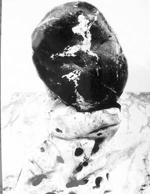 石头上浮现的图案很像刘翔在跨栏比赛中的英姿
