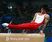图文:奥运男子鞍马决赛 日本名将富田洋之