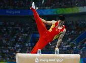 图文:奥运男子鞍马决赛 杨威位列第四名