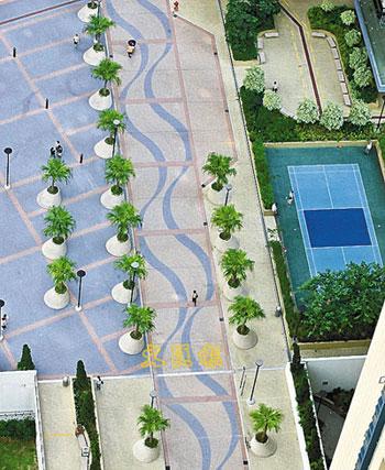 香港葵涌建成城中绿洲 绿化面积高达三成