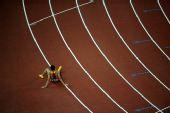 图文:男子110米栏史冬鹏无缘决赛 他的背影