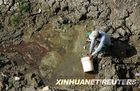 8月20日,在印度尼西亚东爪哇省的拉蒙岸,一村民用塑料桶在几乎干涸的水坝中汲水。新华社/路透