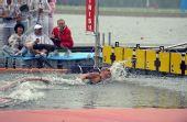 图文:男子10公里马拉松游泳 抵达终点