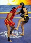 图文:武术男子散手赛况 奥贾吉被打中面门