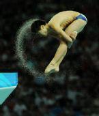 图文:跳水比赛落幕