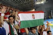图文:水球男子匈牙利夺冠 狂热的匈牙利球迷