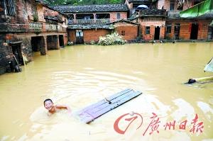 桑田被淹。 记者龙成通 摄