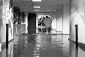 上海暴雨致百余航班延误 候机楼到达层积水漫膝