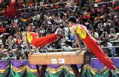 图文:金牌选手在港表演 肖钦杨威一同秀鞍马