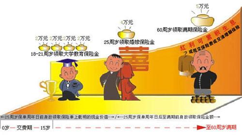 平安世纪彩虹少儿两全保险(分红型,2004)