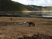 普达错国家森林公园