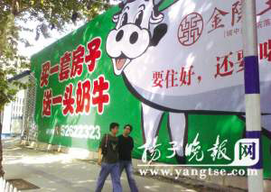 """""""买房送奶牛""""的广告在街头很醒目。陈郁 摄"""