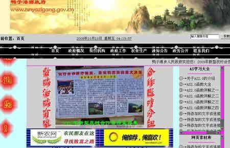 鸭子港乡政府网站截屏